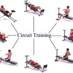 Apa Itu Circuit Training