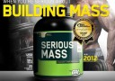 Jual ON Serious Mass Gainer