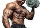 Man Musclebuilder