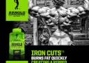 arnold iron cut fat burner