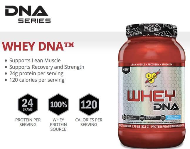 Jual Suplemen Whey Protein DNA Series