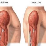 8 Cara Ampuh Meningkatkan Massa Otot