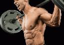 Suplemen Muscletech Platinum Glutamine