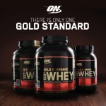 Suplemen ON Whey Gold Standard