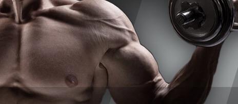 Suplemen Peningkat Testosterone