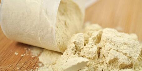 Suplemen Whey Protein