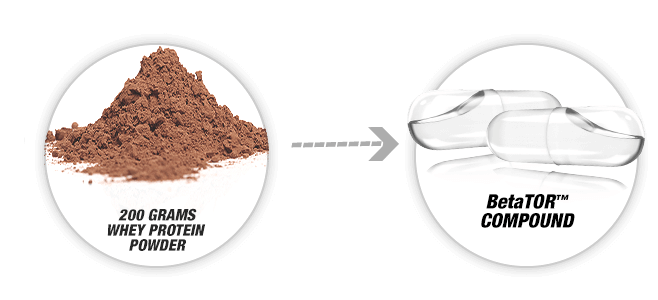 Clear Muscle BetaTOR vs Whey Protein
