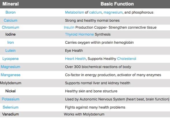 Jenis-dan-Fungsi-Mineral