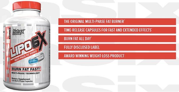 Suplemen Fat Burner Lipo6 X